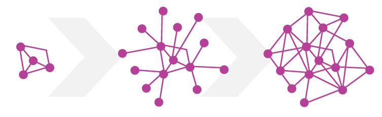 Ontwikkeling netwerk